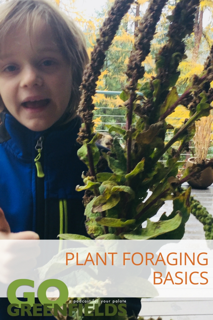 River and Terran Go Plant Foraging @GoGreenfields