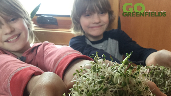 How To Grow Sprouts During The Winter